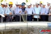 Thủ tướng Chính phủ kiểm tra công tác đảm bảo môi trường tại Formosa