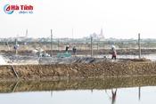 Người dân Lộc Hà tích cực khôi phục sản xuất