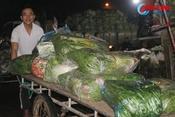 Video: Nhộn nhịp chợ đêm ngày cuối năm