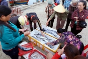 Hải sản sau tết giá tăng mạnh, hàng khan hiếm