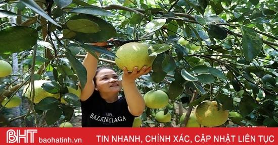 9 danh mục dự án ưu tiên thực hiện xây dựng tỉnh Hà Tĩnh đạt chuẩn nông thôn mới