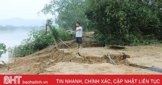 Bờ sông Ngàn Sâu sạt lở, ăn sâu vào đất vườn ở Vũ Quang