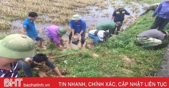 Can Lộc diệt hơn 98 ngàn con chuột