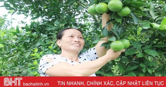 """Cặp vợ chồng bắt đất """"nhả vàng"""" ở huyện miền núi Hà Tĩnh"""