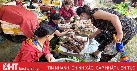 """Chim trời được bày bán công khai từ chợ truyền thống đến... """"chợ online""""!"""
