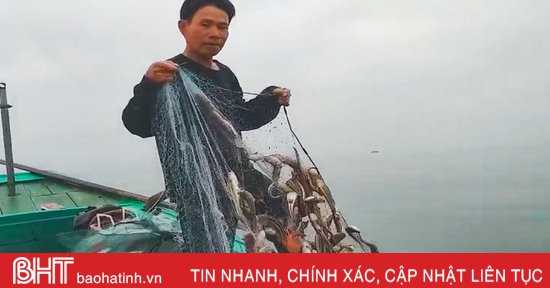 Chuyến đi biển hơn 3 giờ, thu 12 triệu đồng của ngư dân Hà Tĩnh