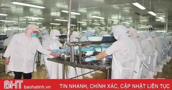 Cung không kịp cầu, doanh nghiệp thủy sản Hà Tĩnh tiếc nuối dừng đơn hàng xuất khẩu