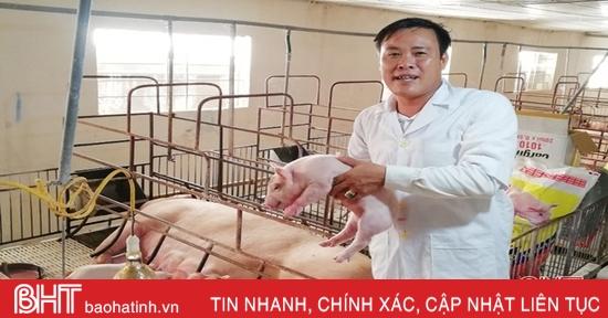 Giám đốc HTX ở Hà Tĩnhđi nước ngoài học cách nuôi lợn công nghệ cao,doanh thu hàng chục tỷ đồng mỗi năm