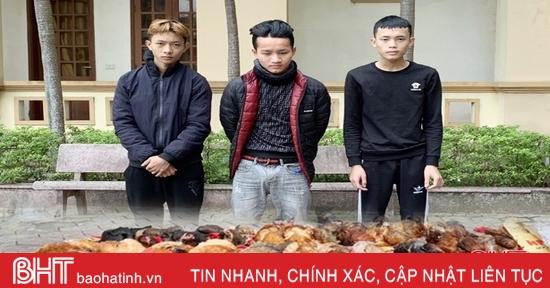 3 thanh niên, một đêm bắt trộm 26 con gà ở... 3 huyện!