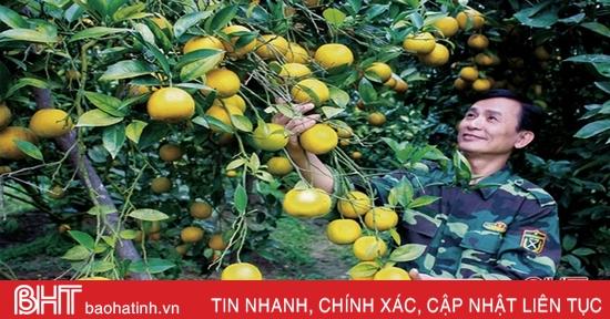 Hà Tĩnh cần ban hành nghị quyết mới về khuyến khích phát triển nông nghiệp