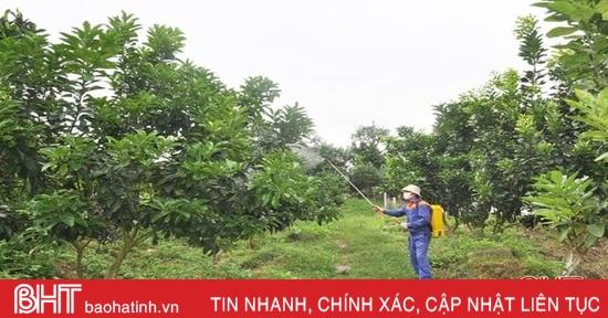 Hà Tĩnh nghiên cứu thành công chế phẩm sinh học trừ sâu hại trên cây trồng