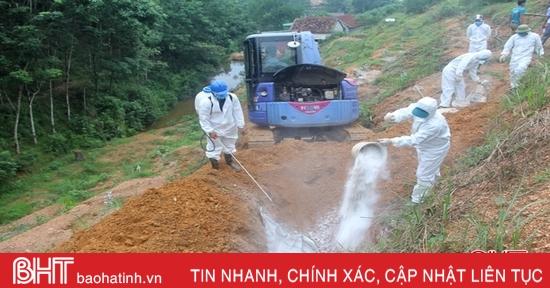 Hơn 22,4 tỷ đồng hỗ trợ người chăn nuôi Hà Tĩnh tái đàn lợn