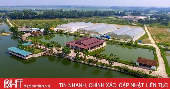 Khí thế mới từ các phong trào thi đua của ngành nông nghiệp Hà Tĩnh