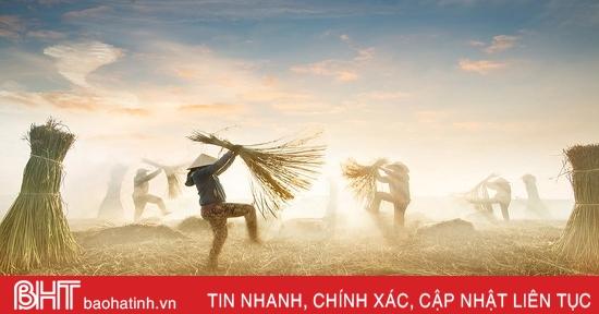 Nhiều ảnh chụp Việt Nam tranh giải Best Photo Of 2020 của Agora
