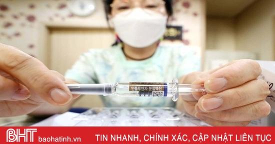 Singapore tạm dừng sử dụng 2 loại vaccine phòng cúm khi Hàn Quốc ghi nhận 48 ca tử vong sau tiêm