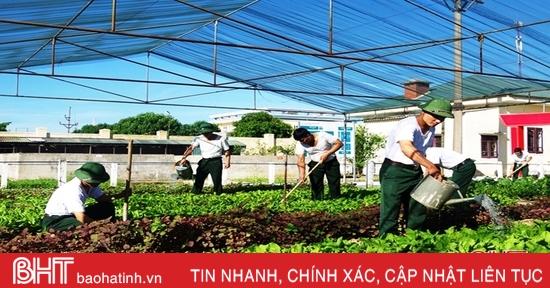 Tăng gia chăn nuôi tập trung, nâng cao đời sống bộ đội Hà Tĩnh