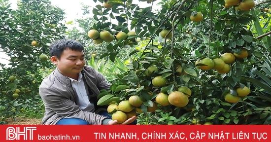 Tạo giá trị bền vững trong xây dựng nông thôn mới ở Hà Tĩnh