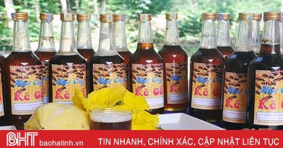 Tiếp nhận chuyển giao kỹ thuật,50 hộ dân Hà Tĩnh thu gần 1.200 lít mật ong