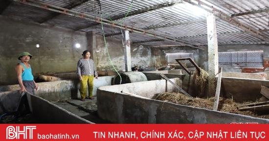 Trắng tay sau lũ, người dân Hà Tĩnh cần được hỗ trợ sinh kế để tái sản xuất