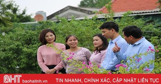 """""""Vườn rau an sinh"""" - sáng tạo trong phát triển BHXH tự nguyện ở Tượng Sơn"""