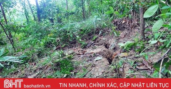 Xuất hiện vết nứt hàng chục mét trên núi, Hương Khê gấp rút sơ tán người dân
